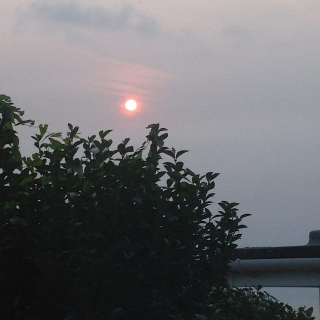 Good morning everyone it is a red sun again Ihellip